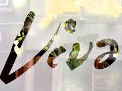 viva window